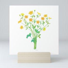 Spring Buttercups Wildflower Illustration Mini Art Print
