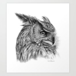 Eagle Owl G085 Art Print