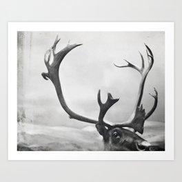 fig. 01   moose Art Print