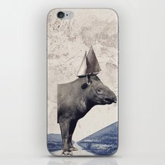Sur la route iPhone & iPod Skin