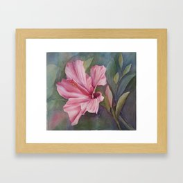 PINK HIBISCUS Framed Art Print