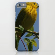 Yellow Warbler Slim Case iPhone 6s