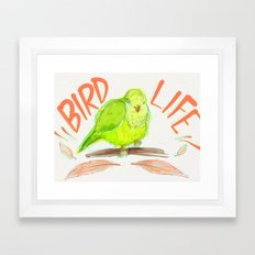 Bird Life Framed Art Print