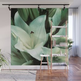 Exotic, Elegant White Star Lilies With Aqua Accents Wall Mural