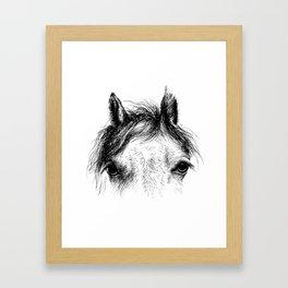 Horse animal head eyes ink drawing illustration. Mammal face portrait Framed Art Print