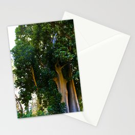 BIG Tree Stationery Cards