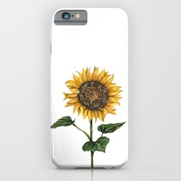 Watercolor Sunflower, Feng Shui, Attract Money, Watercolours iPhone Case