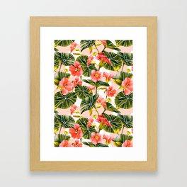 Flowering garden nasturtiums Framed Art Print
