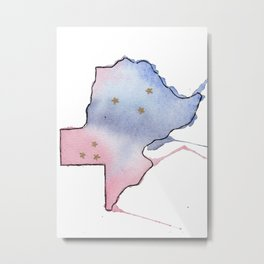 Texas is the Place Metal Print