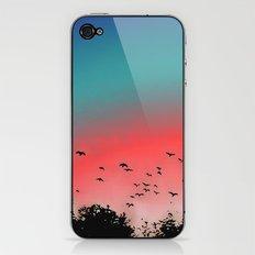 Birds Flying High iPhone & iPod Skin