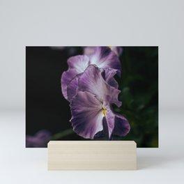 Flowers in the Dark Mini Art Print