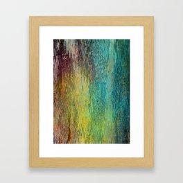 Pine bark Framed Art Print