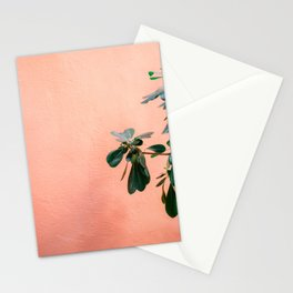 Green on Coral II   Botanical Rovinj fine art photography print   Croatia travel  Stationery Cards