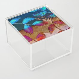 Branched Acrylic Box