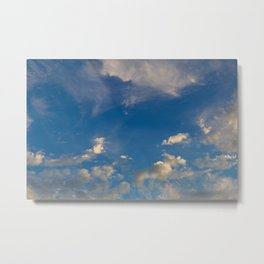 Something In The Clouds I Metal Print