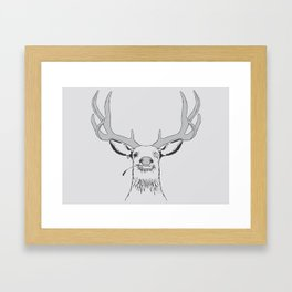 Deer, Pirate  Framed Art Print