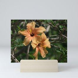 Orange Hibiscus Mini Art Print