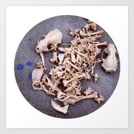 Skulls & Bones Art Print