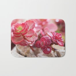 Succulent Garden Cactus Red Flowers Tropical Cacti with drops Bath Mat