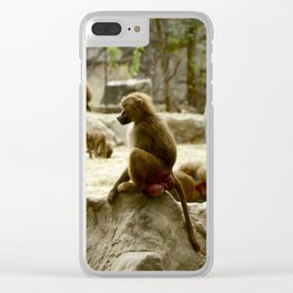 Baboon Contemplating Clear iPhone Case