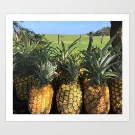 roadside pineapples in Hawaii Art Print