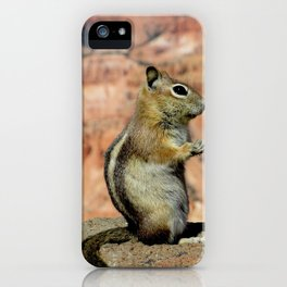 Golden Mantled Ground Squirrel & The Canyon iPhone Case
