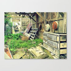 Nature Taking Over Canvas Print