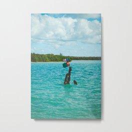 Ceiba, Puerto Rico Metal Print