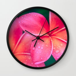 Aloha Hawaii Kalama O Nei Pink Tropical Plumeria Wall Clock