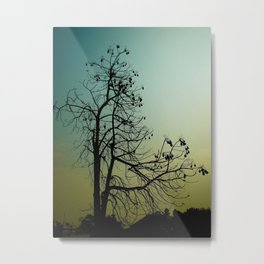 Spindly Tree Metal Print