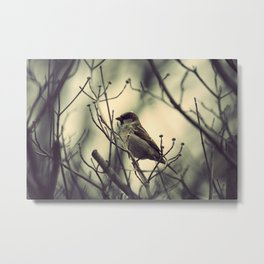 half a bird in the hand is worth... Metal Print