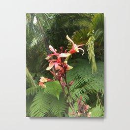 Forest fairies Metal Print