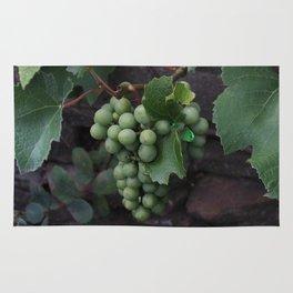 Grapevine Rug