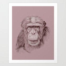 Zee Art Print