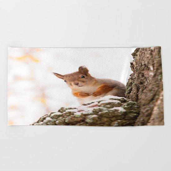 Squirrel in first snow Beach Towel