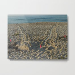 Sea Turtle crawl  Metal Print