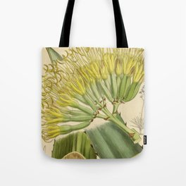 Agave fourcroydes, Asparagaceae, Agavoideae Tote Bag