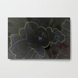 freesia flowers outlined Metal Print