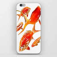 goldfish iPhone & iPod Skins featuring Goldfish by Regan's World
