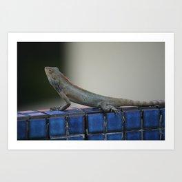 Changeable Lizard Art Print