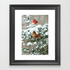 After the Snow Storm: Three Cardinals Framed Art Print