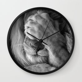 Even Lions Have Bad Days - The Lion Sleeps Tonight black and white photograph  Wall Clock