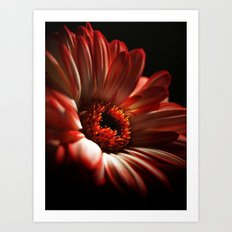 Floral Red Head Art Print