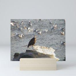 Eagle on Ice Mini Art Print