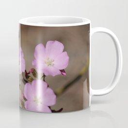 Drosera menziesii Coffee Mug