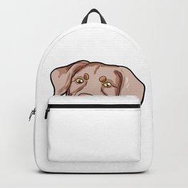 Retriever Chesapeake Bay Puppy Doggie Present Gift Backpack
