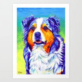 Colorful Blue Merle Australian Shepherd Dog Art Print