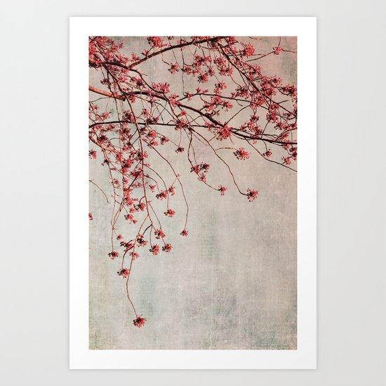 spring branches Art Print