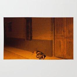 Street Dogs Rug