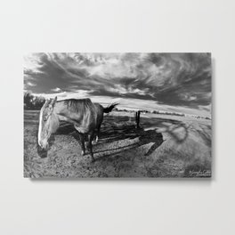 Farm Horse Metal Print